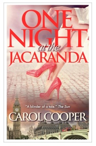 One Night at the Jacaranda_eBook_Oct_2014_framed