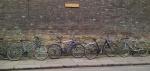 bikes against a wall