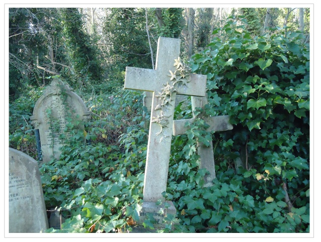 ivy on crosses