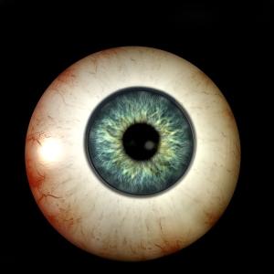 1138666_78954230 medical eye