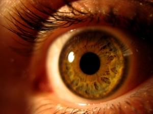 1221586_15421511 nice eye