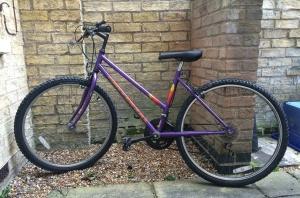 Universal Ladies' Bicycle