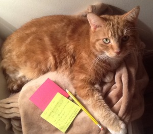 Mishmish with Post-It notes