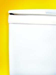 FreeImages.com/Ricardo Migliani
