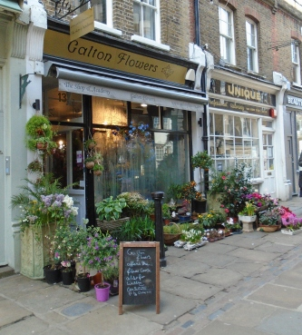 Galton Flowers, Flask Walk