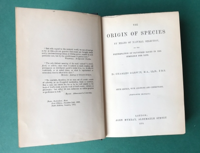 Origin of Species