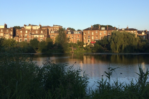 One of the ponds on Hampstead Heath
